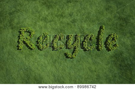 Recycle Create By Tree With Grass Background