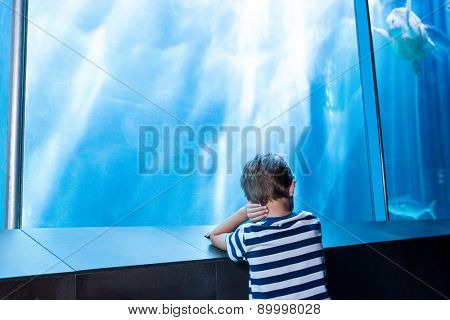 young man waiting in front of an aquarium at the aquarium