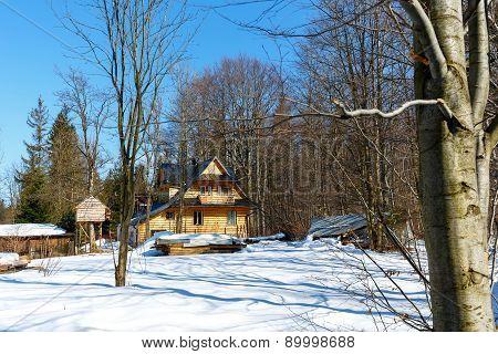 Wooden Villa In Winter Scenery In Zakopane