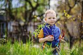 image of tomato plant  - Handsome little blond boy planting and gardening tomato seedlings in garden or farm in spring day - JPG