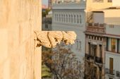 image of gargoyles  - Gargoyle on the facade of a medieval building - JPG