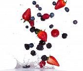 foto of blackberries  - Fresh raspberries - JPG
