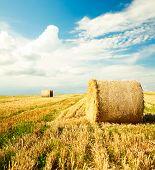 pic of haystacks  - Beautiful Farm Scenery with Haystacks - JPG