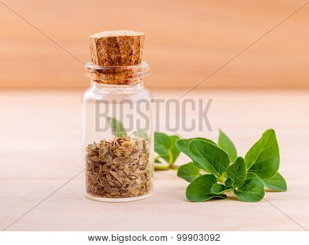 Fresh Oregano And Dry Oregano In A The Bottle On Wooden Background .
