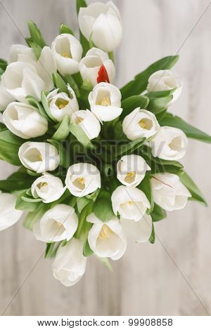white tulips for Mother's Day