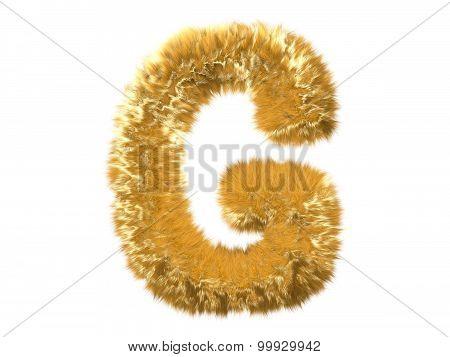 Letter G from fur fox alphabet