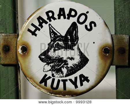 Harapos Kutya