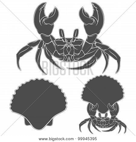 Image with shell crab claws in. Vector illustration.
