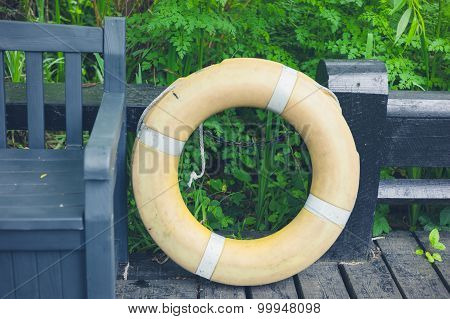 Life Buoy In Forest