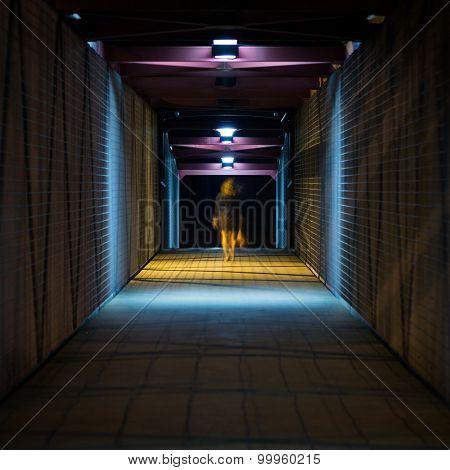Blurry woman figure in the metal bridge tunnel.