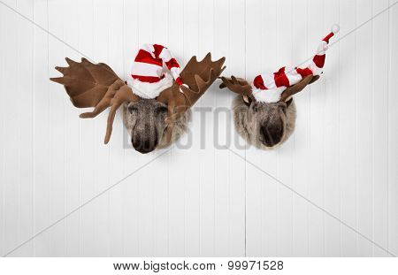 Couple of reindeer hanging on a wall for christmas decoration.