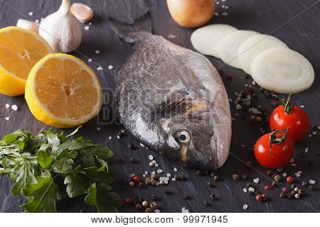 Preparation For Cooking Raw Fish Dorado With Ingredients Close-up.