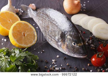 Raw Dorado Fish With Ingredients Close-up. Horizontal
