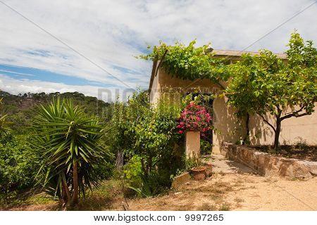 Spanish County