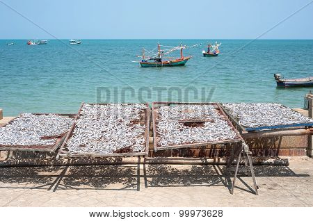 Silver Fish Drying In Racks Next To The Sea In Thailand