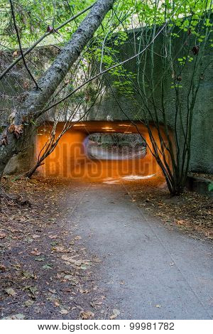 Discovery Park Tunnel