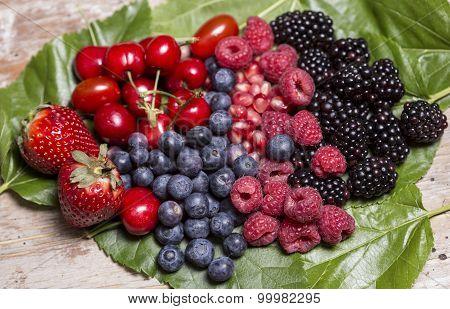 Antioxidants Fruits In Leaf