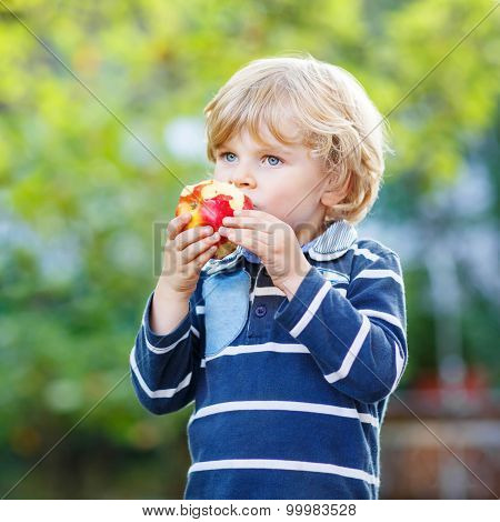 Funny Blond Kid Boy Eating Healthy Apple