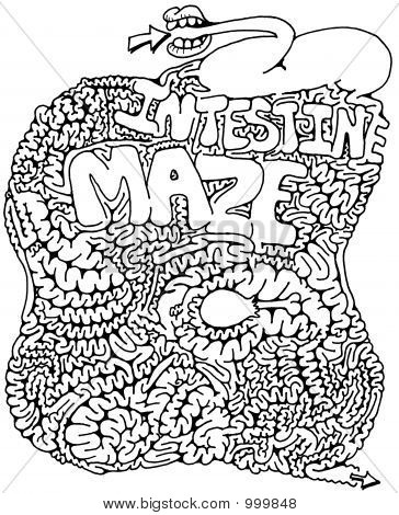 Intestine Maze