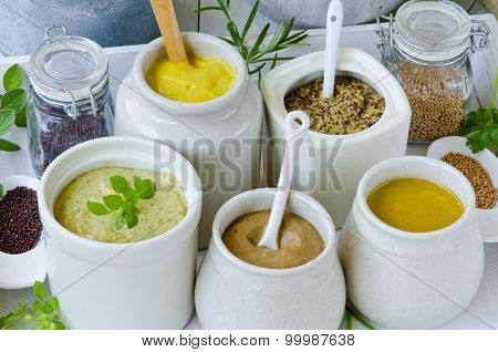 Herbs And Spices. Variety Of Mustards.