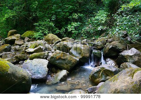 Amazing mountain stream among southern forests