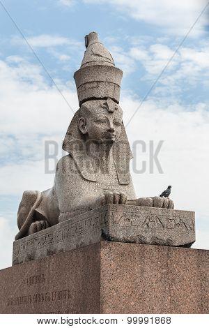 Sphinx On Embankment  Of The Neva River In Saint Petersburg