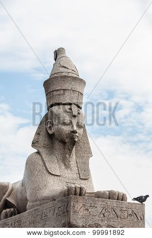 Sphinx On Embankment  Of The Neva River In St. Petersburg