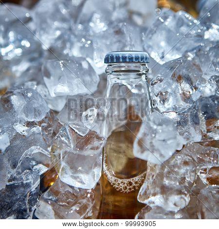Bottle of beer is in ice